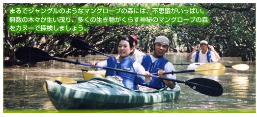 奄美マングロ-ブパーク カヌ-体験