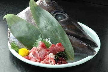 魚屋料理 魚市 心斎橋北店