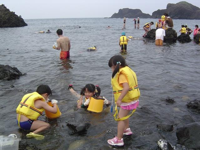 磯遊び(海岸)