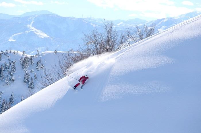 ゲレンデ最上部の3コースは非圧雪フィールド!