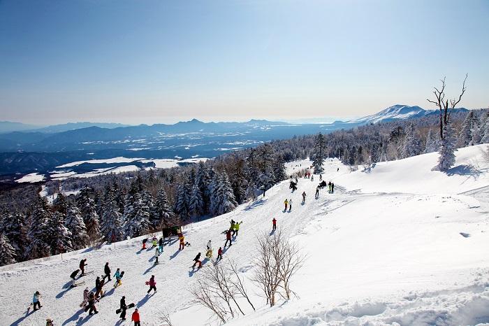 全長3200m!関東最長ゴンドラ完備で山頂まで楽々移動♪