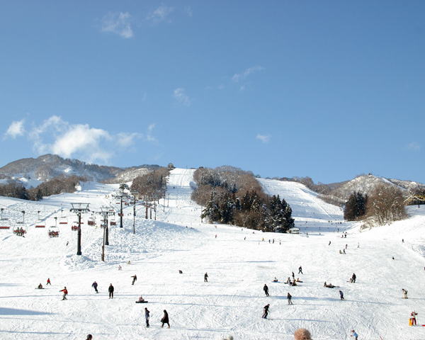 戸狩温泉スキー場は初中級者向けのコースが80%!