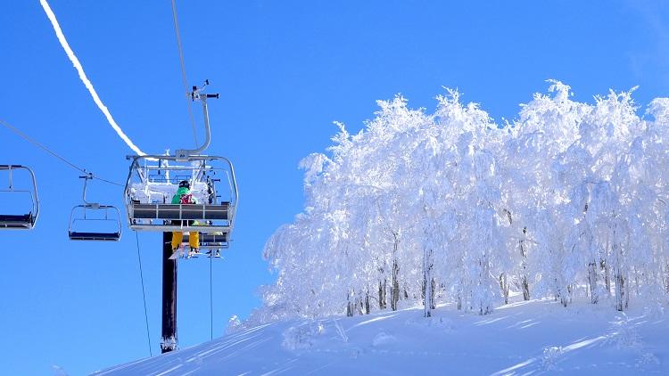 白山連峰に包まれた西日本最大級のビッグゲレンデ「スキージャム勝山」