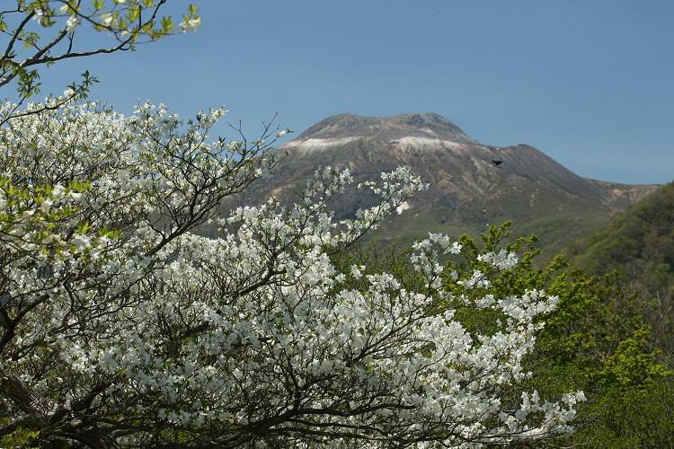 山頂茶臼展望台からの眺めは絶景!