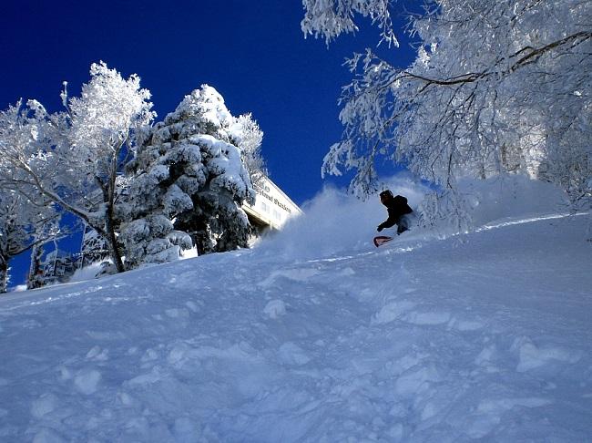 竜王スキーパーク 名物木落しコース