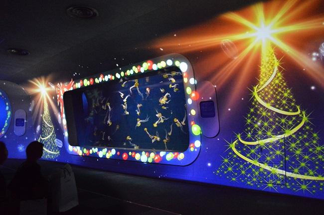 クラゲショー「海月の宇宙~クリスマス~(イメージ)