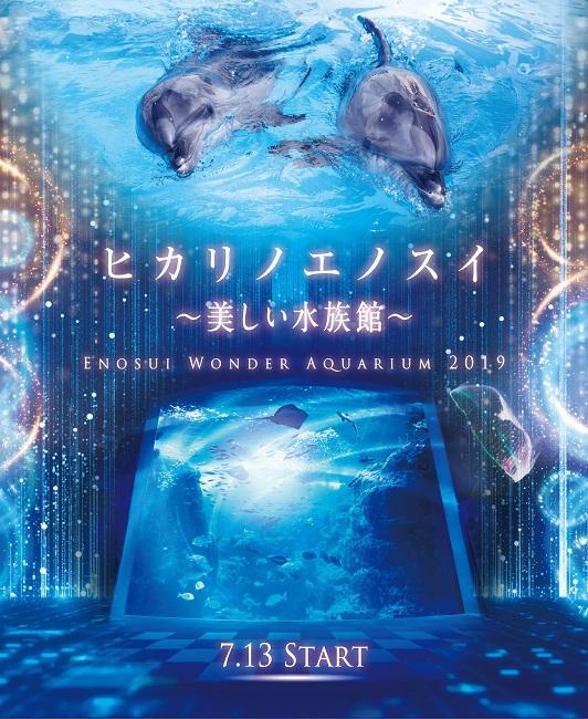 【新江ノ島水族館】ヒカリノエノスイ(7.13 START)