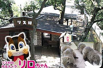 金華山 リス村