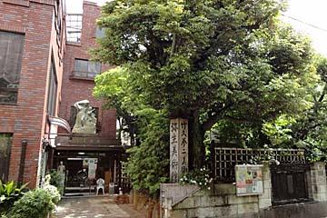 弥生美術館・竹久夢二美術館